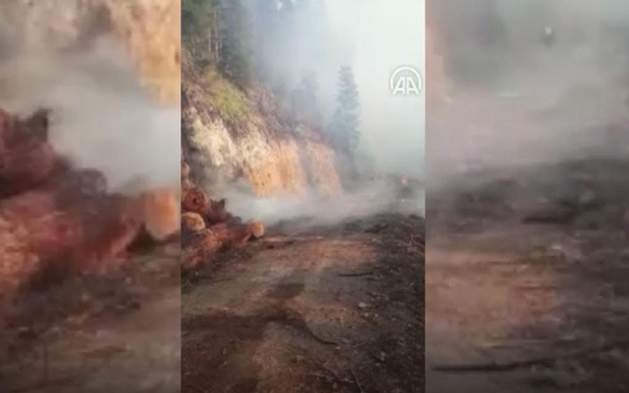 Gümüşhane Valisi'nden açıklama geldi! Örümcek Ormanları'nda yangın çıktı