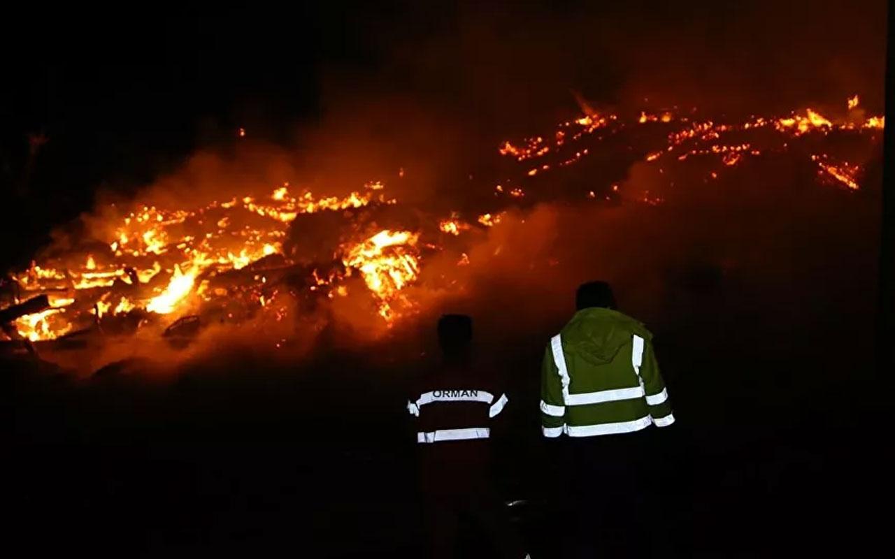 Olayın adresi Kastamonu! 14 haneli köyde yangın: 10 ev ve bir cami yandı