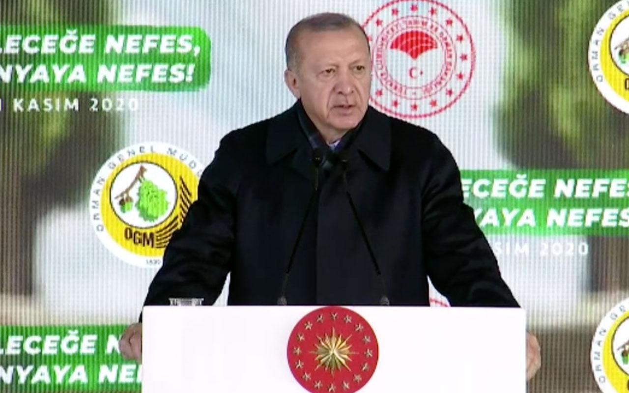 Cumhurbaşkanı Erdoğan: Gezi'de güya çevre adına ortalığı yakıp yıkanlar fidan dikmemizden rahatsız