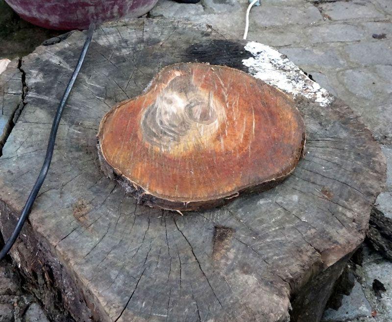 Sürmene'de kestiği ağacın gövdesindeki figür şaşırttı İlk gördüğümde bir korku hissettim