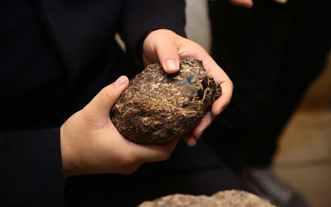 Köylülüler yıllarca çıra zannedip yaktı! Gramı altınla yarışan kehribara Çin talip oldu
