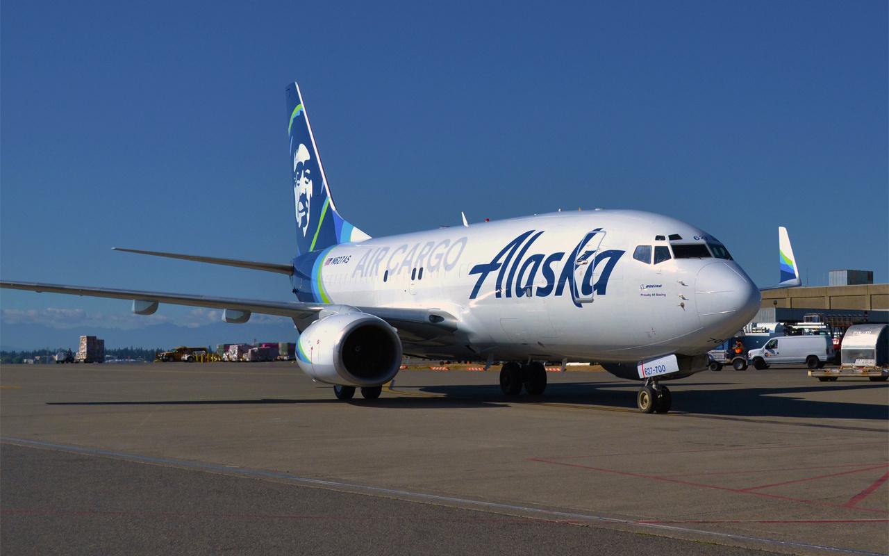 ABD'de piste inen uçağın çarptığı bozayı öldü