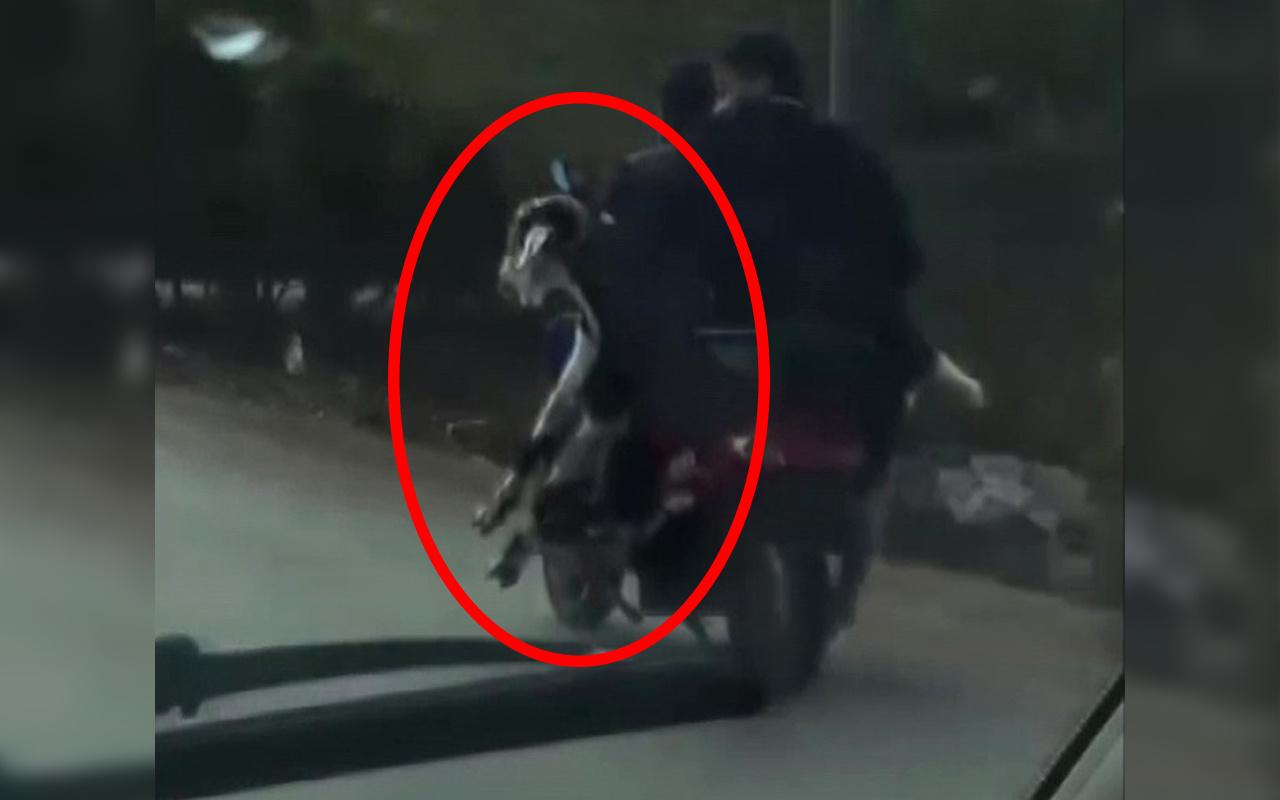 Antalya'da trafikte şok eden görüntü! 3 yolcuyu gören bir daha baktı