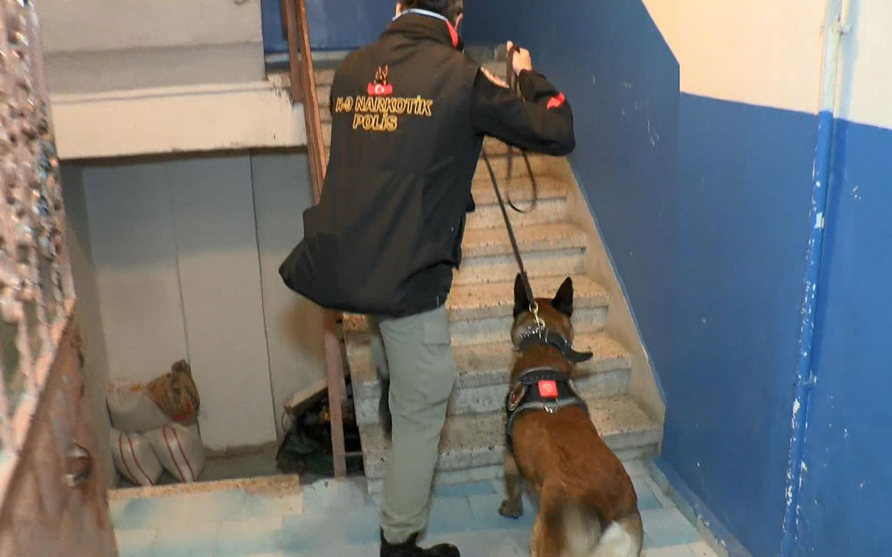 Silivri'de uyuşturucu operasyonu; çok sayıda gözaltı