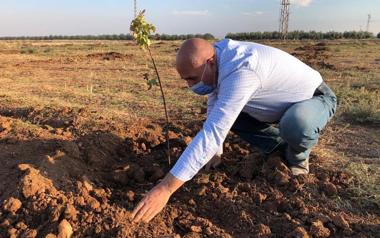 Mardin'de emekli öğretmen şehirden sıkılıp bu işi yapmaya başladı
