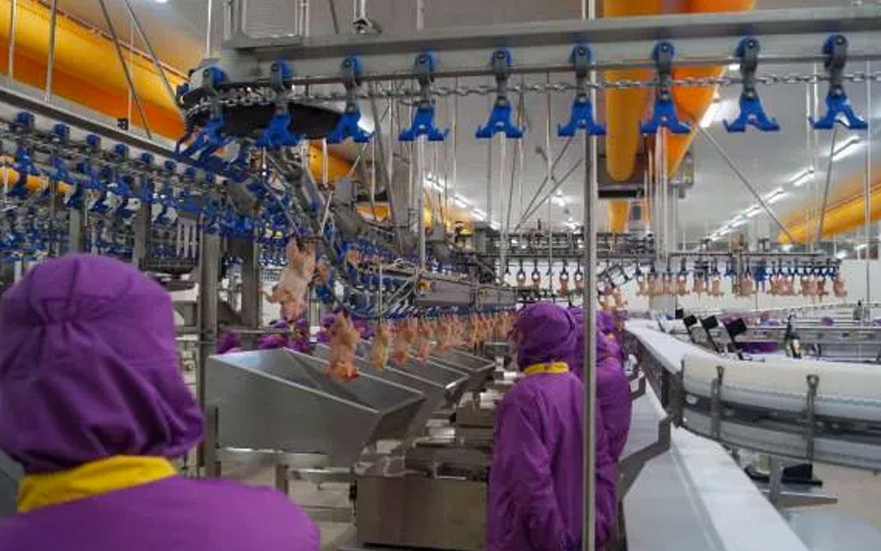 Suudi Arabistan Türkiye'den hayvanî ürün ithalatını yasaklaladı