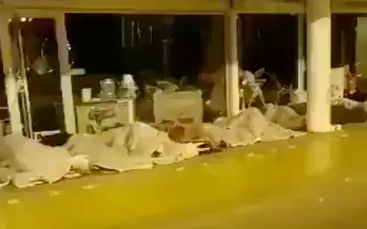 İstanbul'da yürek sızlatan görüntüler! Sokağa çıkma yasağı acı manzarayı ortaya çıkardı
