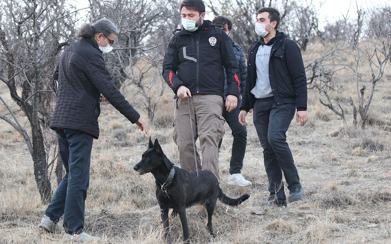 Ankara'da dağlık arazide kesik insana ait kafatası bulundu