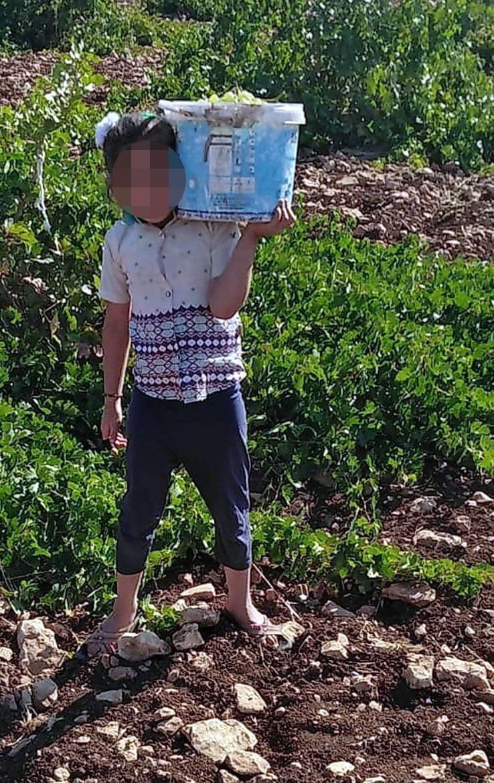 Annenin uykularını kaçıran telefon: Çocuktan vazgeç yoksa çocuk açlıktan ölür