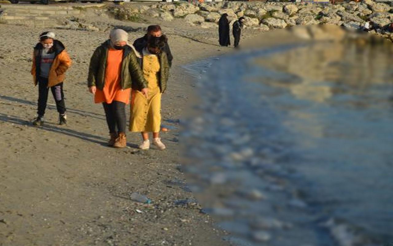 Korkutan görüntü! Avcılar sahilini dev denizanaları istila etti
