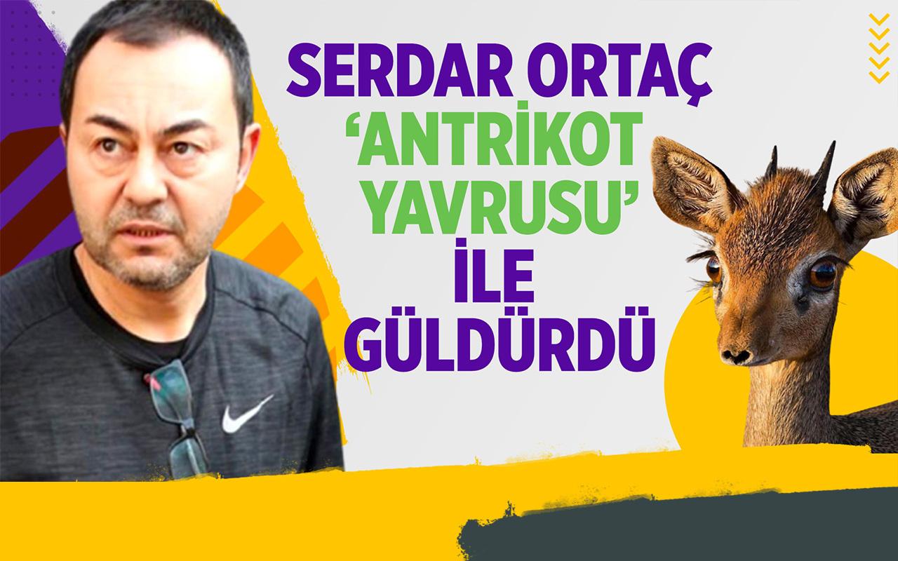 Serdar Ortaç'tan 'Antrikot Yavrulu' sevgi gösterisi