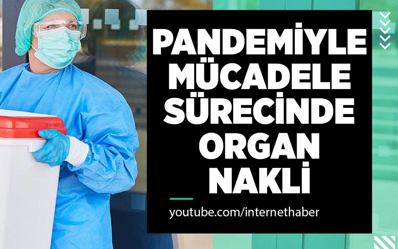 Pandemi süreci organ nakli bekleyen hastaları nasıl etkiledi?