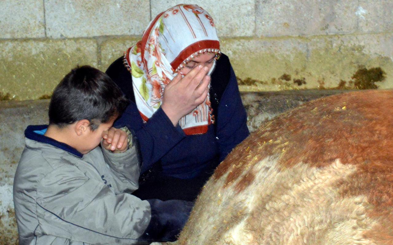 Van'da sabah o halde görünce anne oğul gözyaşlarına boğuldular