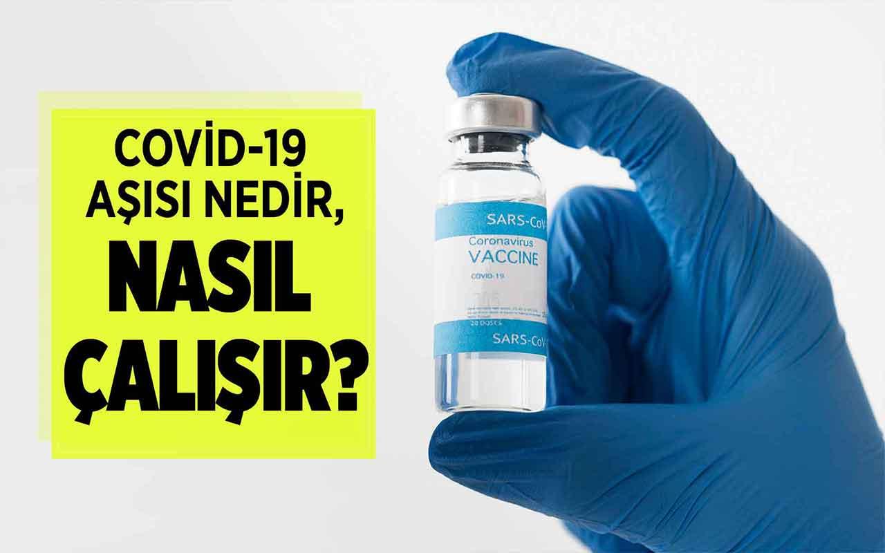 Covid-19 aşısı nedir, nasıl çalışır?