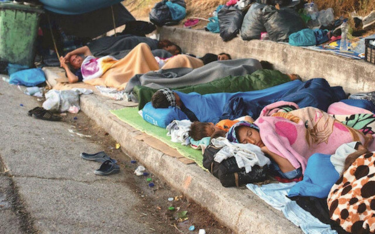 Fareler mülteci bebekleri kemiriyor! Alman Bakan korkunç gerçekleri açıkladı