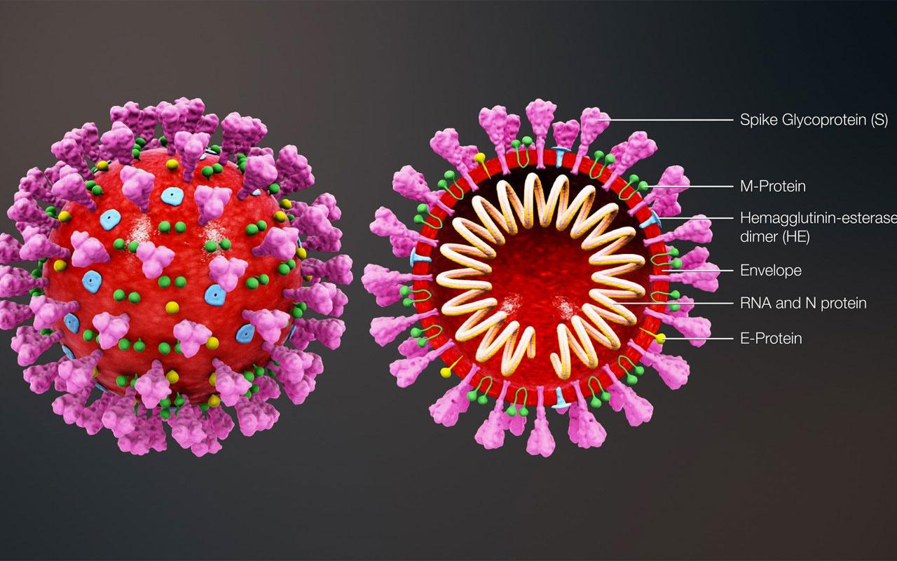 Mutasyonla koronavirüs daha beter oldu! Aşı umudu karardı kabusu artıran gelişme