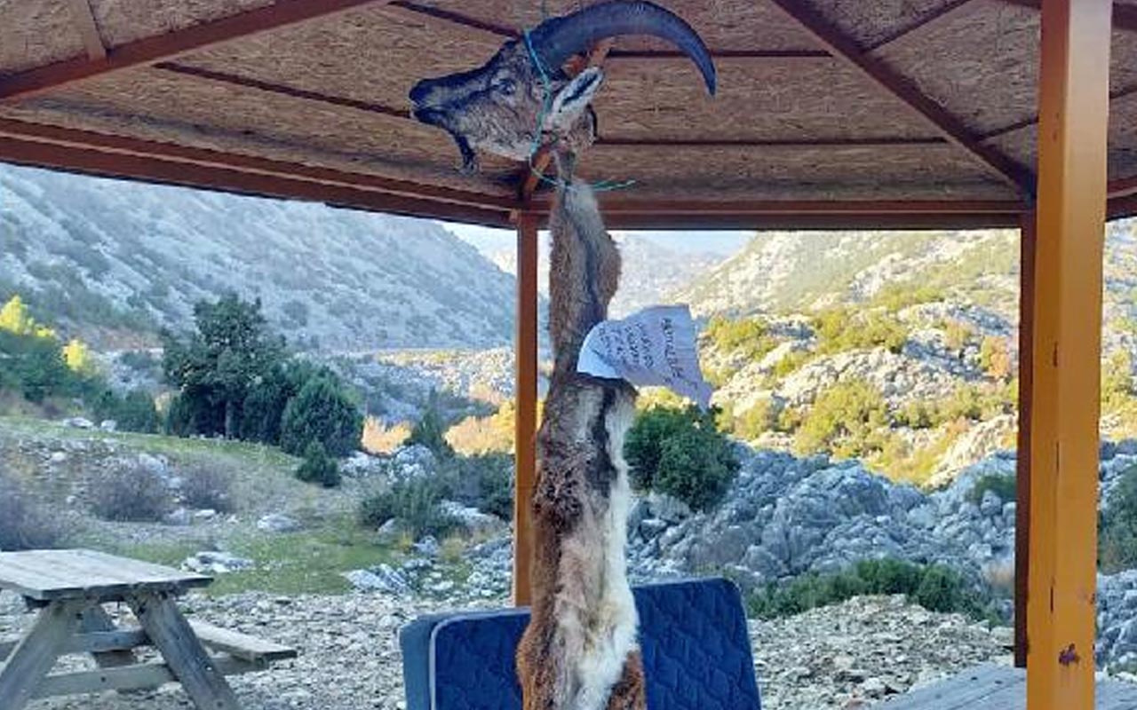 Kaçak avcıların muhtara tehdit notu! Antalya'da muhtar hayatından endişe ediyor