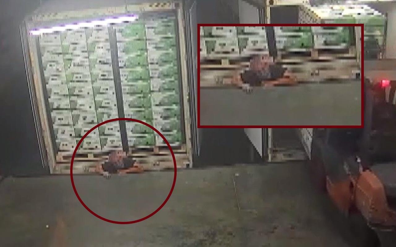 Arnavutköy'de korkunç ölüm kamerada! Sigorta şirketi tazminat teklifiyle aileyi şoke etti
