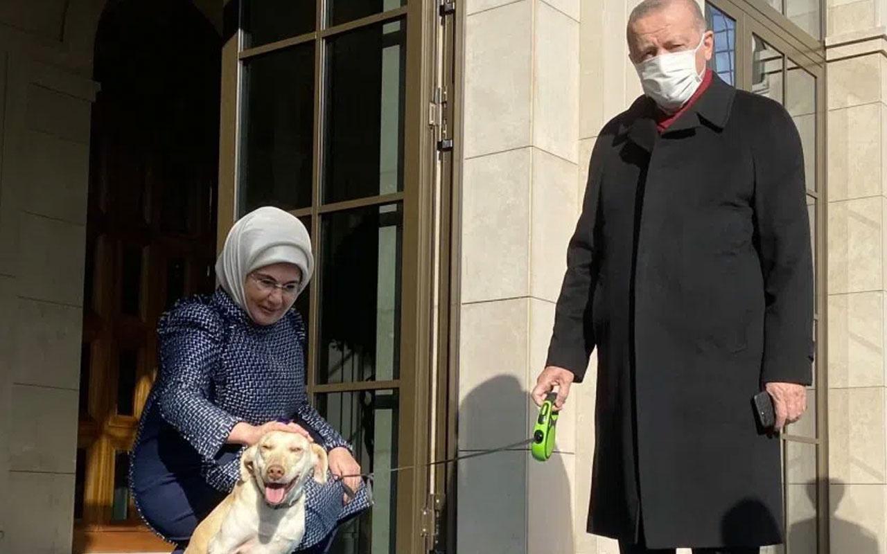 Emine Erdoğan'dan Cumhurbaşkanı Erdoğan paylaşımı! Leblebi ile uğurladık