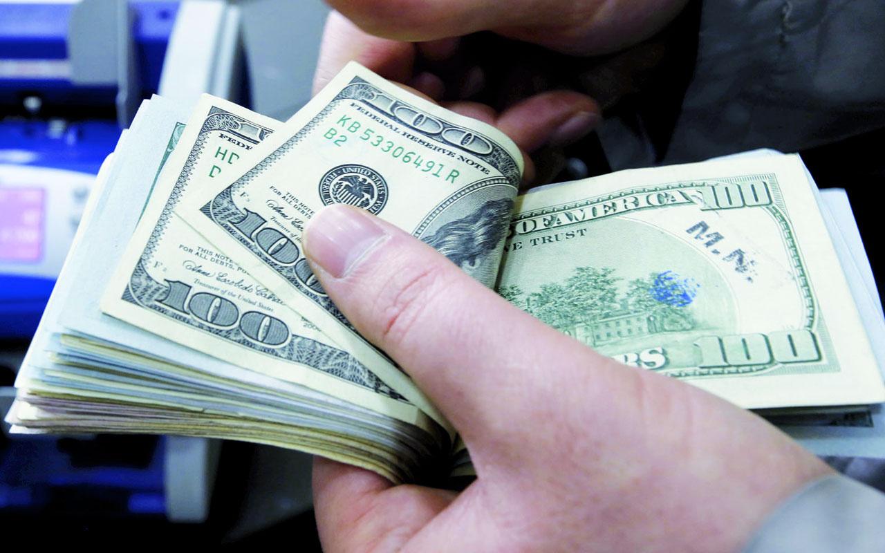 Dolar önümüzdeki yıl ne olur? Ekonomi profesörü Arzova'dan yatırımcıya net mesaj
