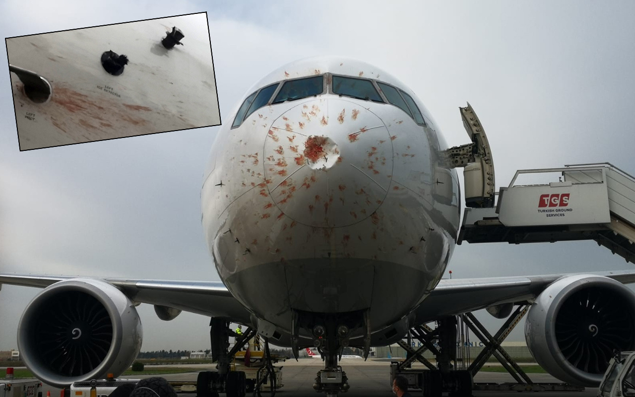Hasar gördü kana bulandı! İstanbul'da THY'nin kargo uçağı acil iniş yaptı