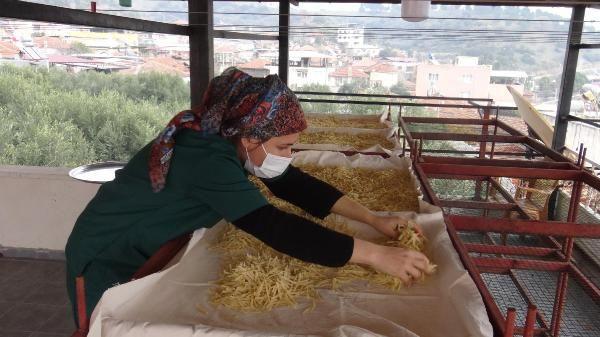 Aydın'da çöpe atılıyordu bu işe başladı! Şimdi paraya para demiyor
