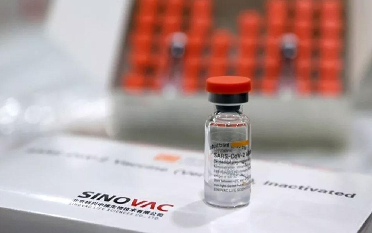 Koronavirüs sperm kalitesini düşürüyor