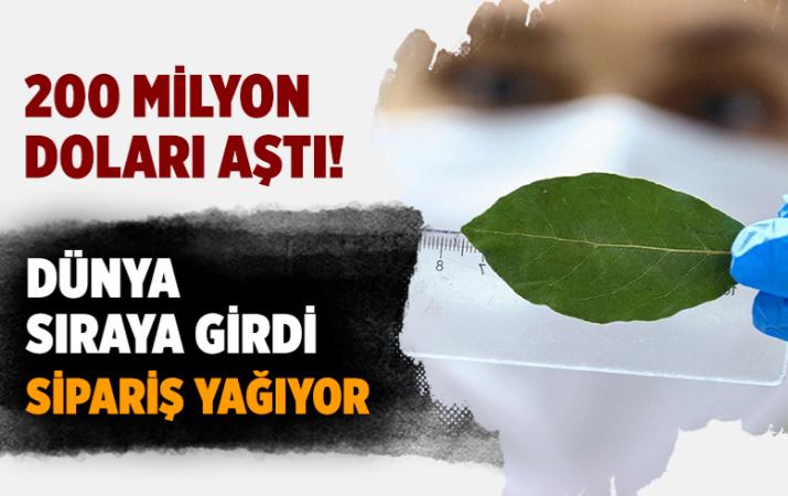 Türkiye'nin baharat ihracatı 200 milyon doları aştı