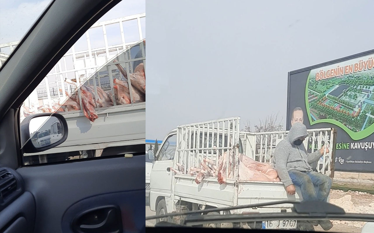 Şanlıurfa'da skandala tepki yağıyor! Kilolarca eti bu şekilde taşıdılar