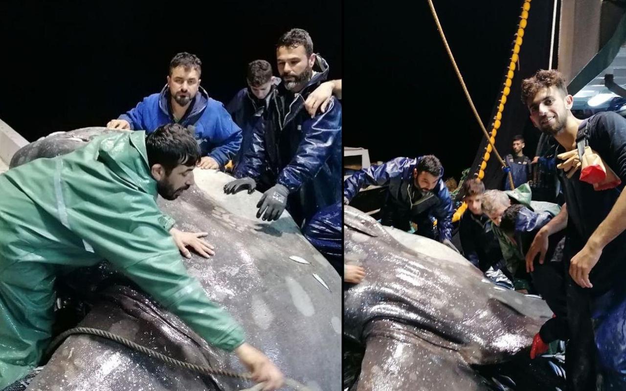 Adana'da balıkçılar telefona sarıldı! Çok nadir görülüyor