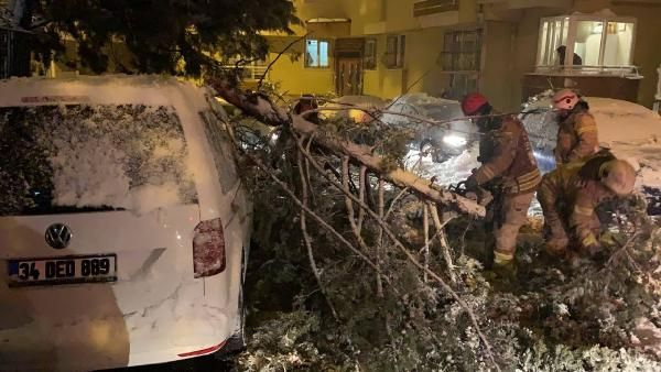 İstanbul'da kar ağaçları devirdi çatıları çökertti! Uyarılar üst üste geliyor İDO seferleri iptal