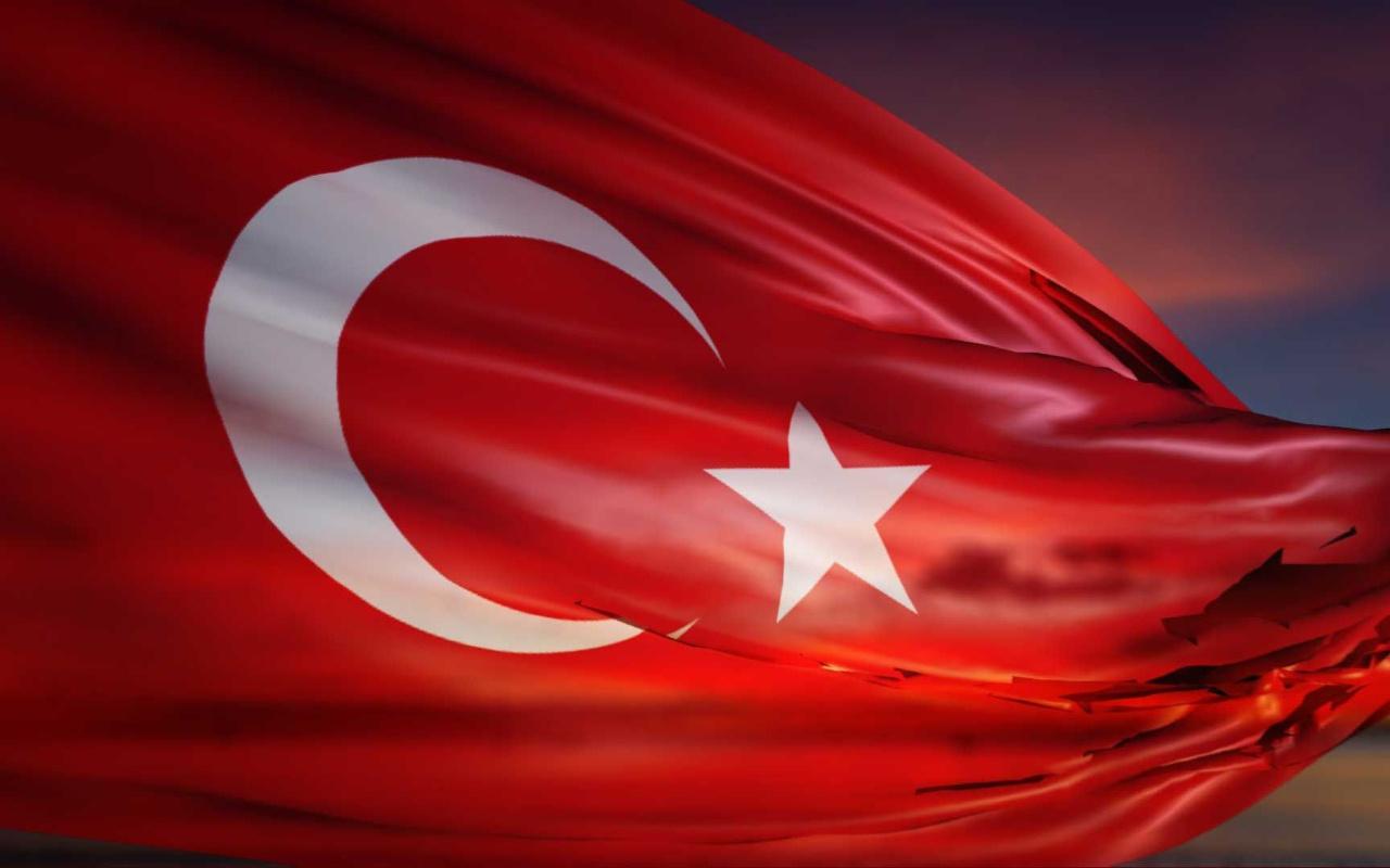 Ünlü ekonomistler Türkiye'nin büyüme performansını değerlendirdi