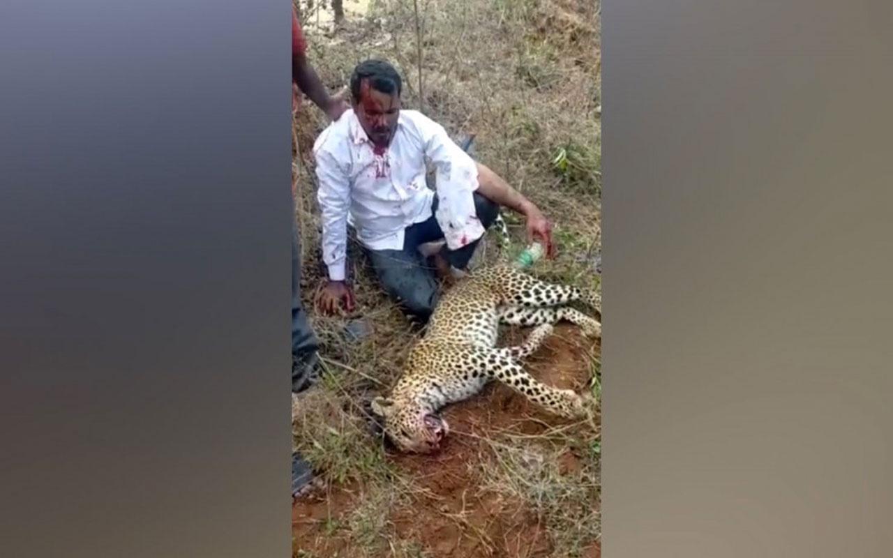 Hindistan'da bir adam ailesine saldıran leoparı elleri ile öldürdü