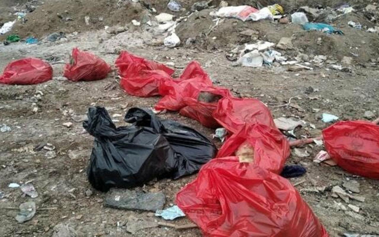 Ankara'da ürperten görüntü! Poşetlerin içinde...