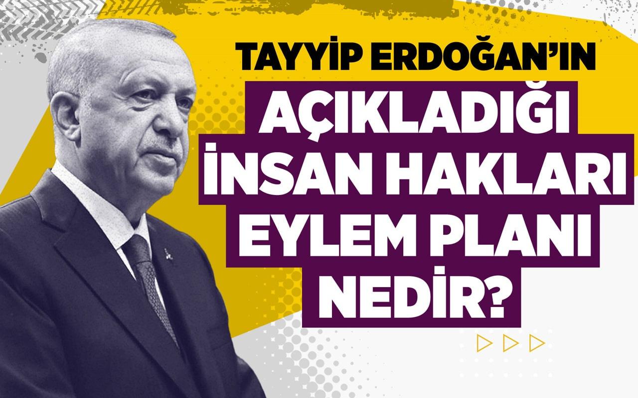 Tayyip Erdoğan'ın açıkladığı insan hakları eylem planı nedir?