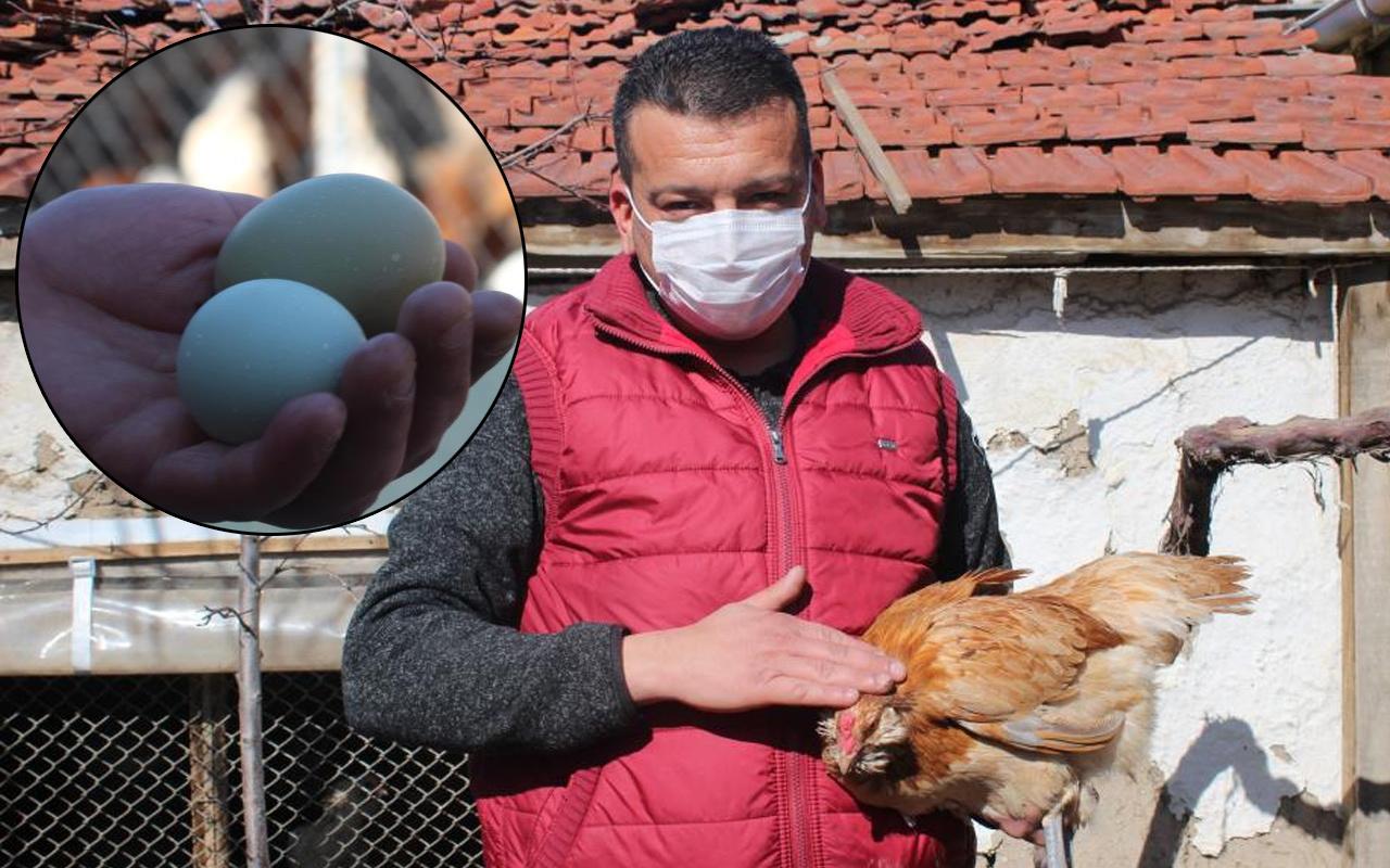 Eskişehir'de renkli yumurtaları gören inanamadı! Sebebi ise bakın ne