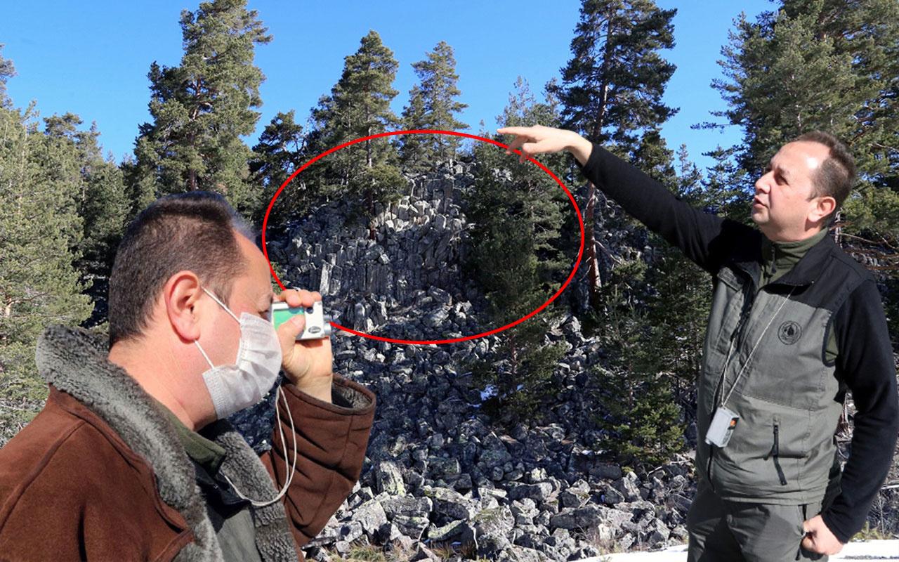 Bolu'da yeryüzüne çıktı 20 metreye yükseldi gören şaştı kaldı