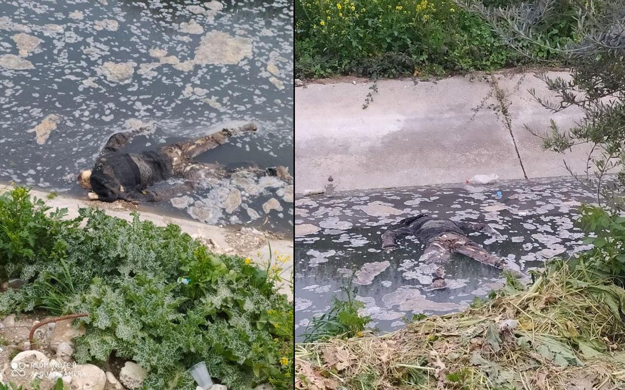 Mersin'de su kanalında erkek cesedi bulundu