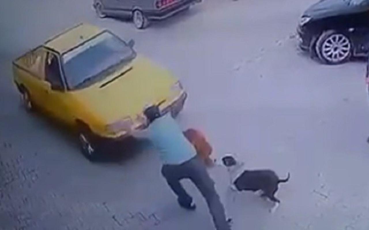 Neye uğradığını şaşırdı! İzmir'de son anda fark etti ölümden döndü
