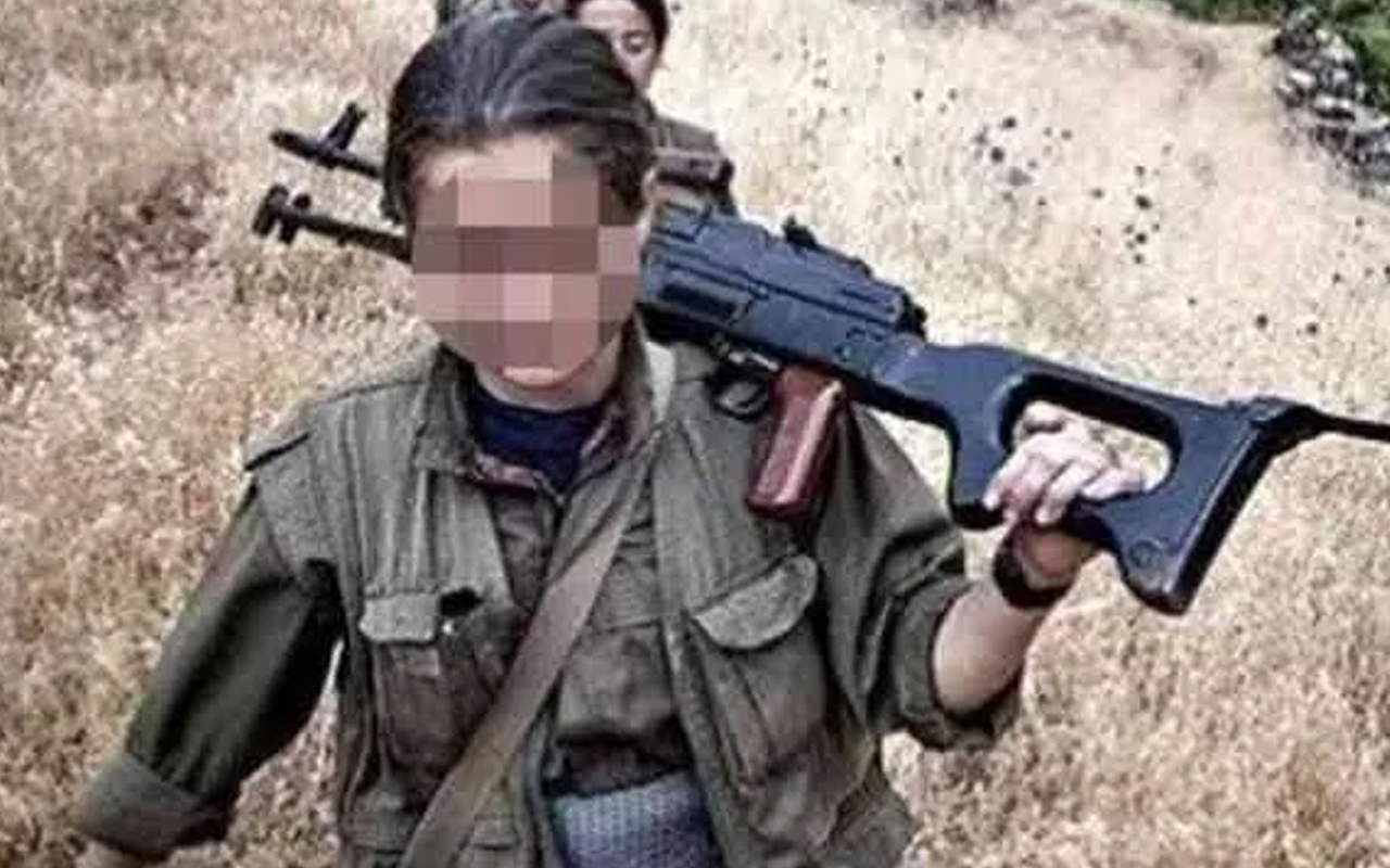 Teslim olan teröristin 'Beden eğitimi öğretmeni' itirafı: Bunun abisi de orada