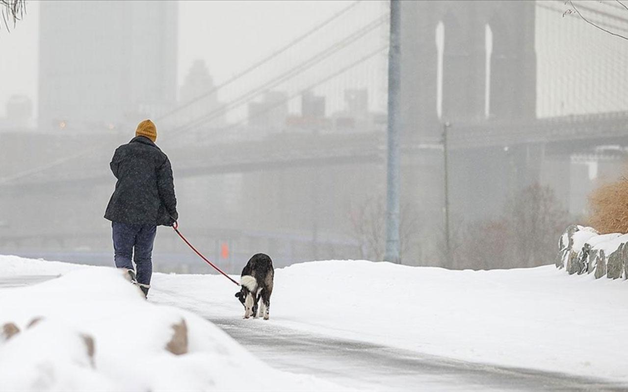 Kutup soğukları ABD'nin Teksas eyaletini felç etti ölü sayısı 111'e çıktı