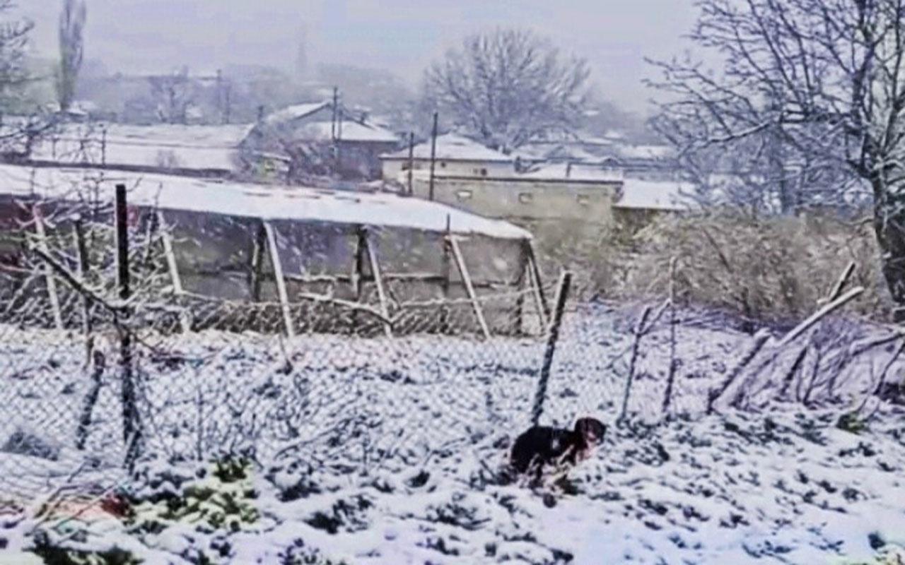 Edirne ve Kırklareli'nde kar yağışı başladı yetkililerden buzlanma uyarısı