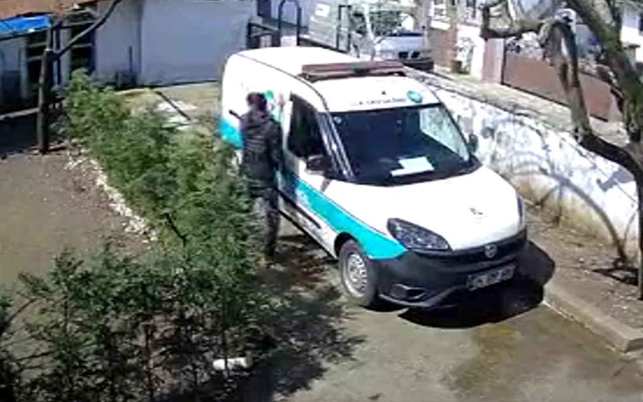 Sakarya'da bahçedeki köpekten korkan kurye soluğu ağaçta aldı