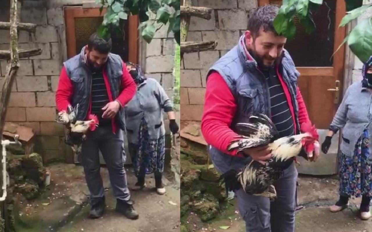 Trabzon'da horozun dediğini duyunca şaştı kaldı! Kesilmekten kurtuldu