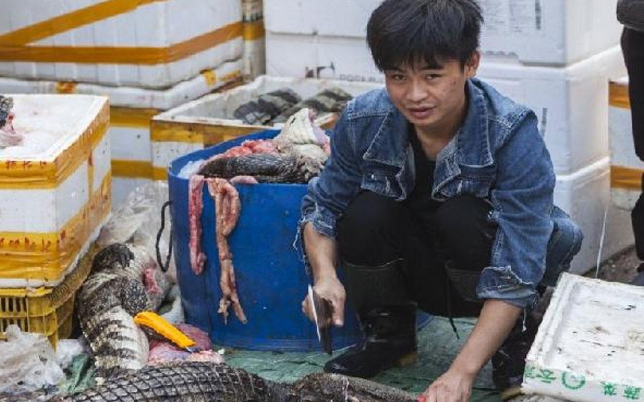 Dünya Sağlık Örgütü'nden çağrı: Canlı hayvan pazarlarını kapatın