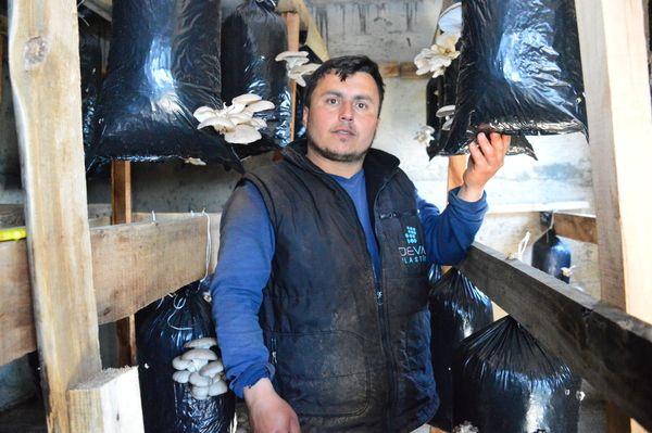 Askerde görüp hobi olarak Sakarya'da başladı! 2 bin lira kar etti