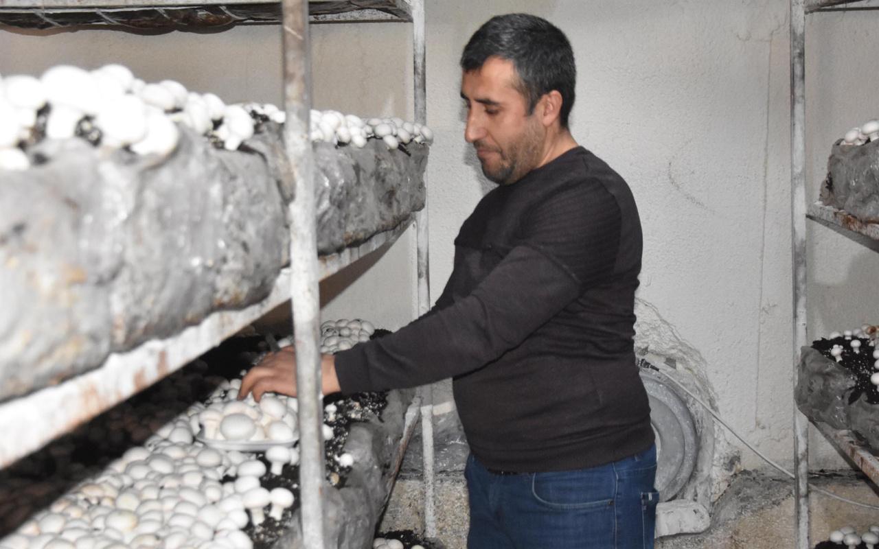 Bitlis'te kendi işini kurdu yılda 240 ton satıyor! Dört bir yandan sipariş yağıyor