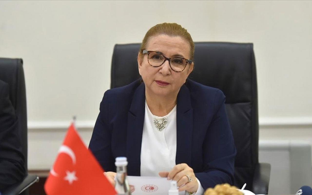 Kendi bakanlığına dezenfektan satan Ruhsar Pekcan'ın görevine son verildi Mehmet Muş bakan oldu