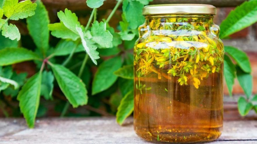 Sarı kantaron faydaları sarı kantaron yağı cilde nasıl uygulanır?