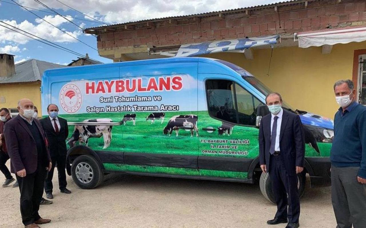"""Bayburt'ta hayvan ambulansı """"haybulans"""" hizmete girdi"""